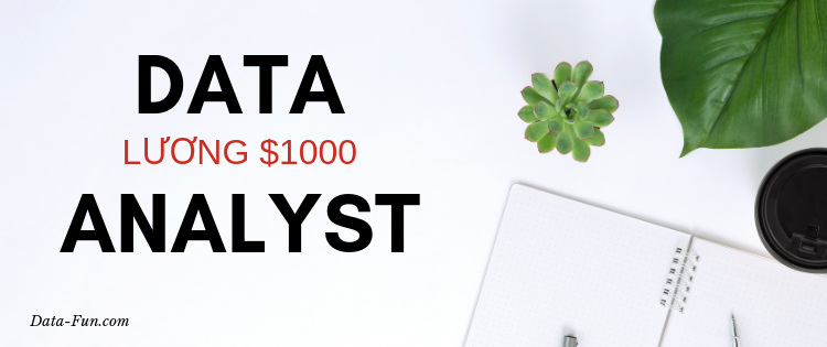 DATA ANALYST - Luong $1000