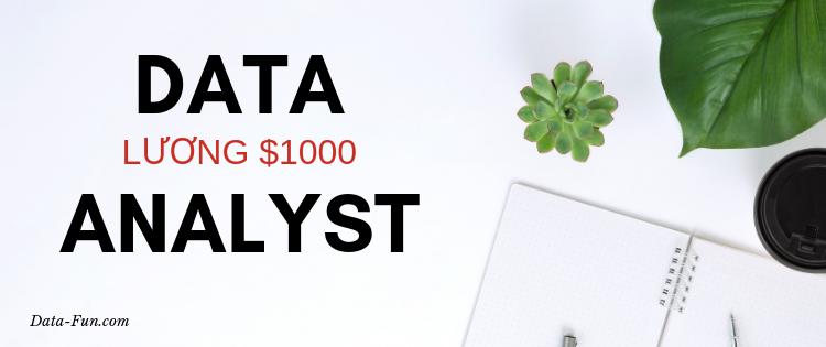 DATA ANALYST - Luong $1000